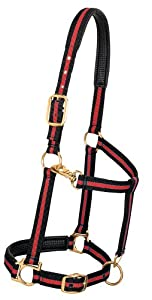 Weaver Leather Padded Adjustable Chin and Throat Snap Halter, Red, Average Horse Size