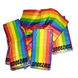 Gay Rainbow Sisters Gay Pride Pocket Tissue 12 Pack Rainbow