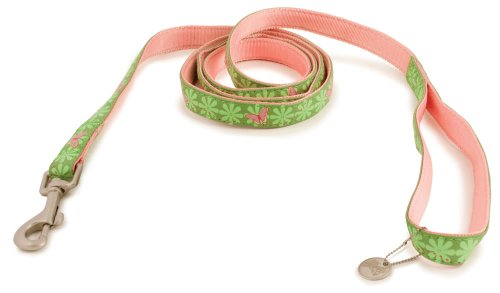 Premier Bark Avenue 3/4-Inch by 6 Foot Dog Leash, Beautiful Butterflies