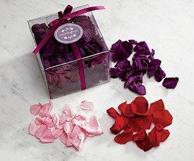 Preserved Natural Rose Petals - Pastel Pink