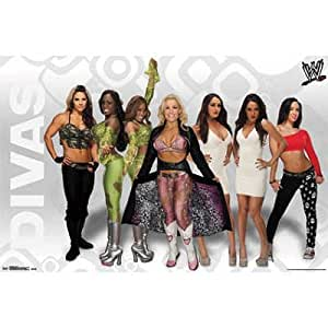 (22x34) WWE - Divas 13 Wrestling Sports Poster