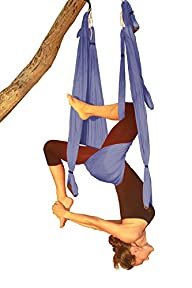 Wing Yoga Swing Inversion Sling. Now…