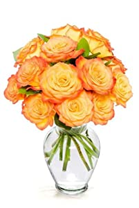 12 Long Stem Orange Roses - With Vase