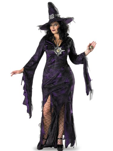 Plus Size Purple and Black Witch Costume Webs Nets Womens Theatrical Costume