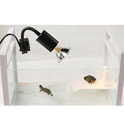 Aquarium-Reptile-Terrace-Tortoise-Floating-Island-Fish-Tank-Decor-M