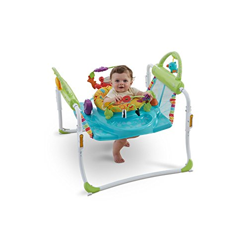 Baby Walker And Jumper front-336327