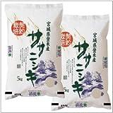 【一味違うお米】宮城県登米産 ササニシキ 無洗米 10kg 【 5kg×2 】28年産