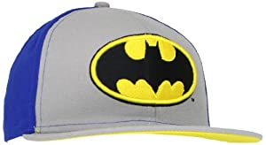 DC Comics Men's 3D Batman Hat at Gotham City Store