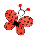 Great Pretenders Ladybug Wings with Headband, Red/Black (One Size)