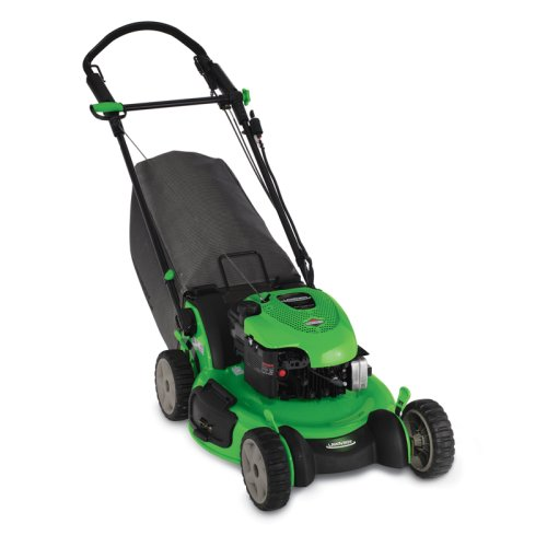 Buy Lawn-Boy Insight Series 21-Inch Briggs & Statton Gas Powered Engine Self-Propelled Lawn Mower With Sens-a-Speed #10666