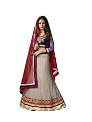Grey Net And Georgette Lehenga Choli