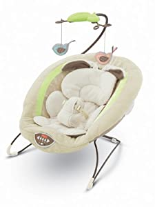Fisher-Price My Little Snugabunny Bouncer Seat