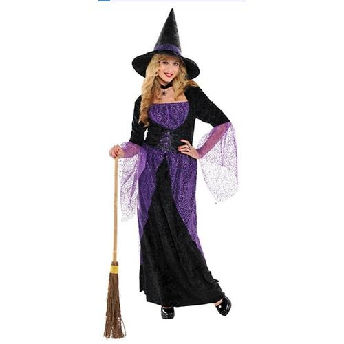Teen Girls Pretty Potion Witch Costume - Small