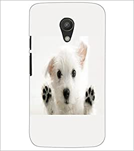 PrintDhaba Puppy D-2228 Back Case Cover for MOTOROLA MOTO G2 (Multi-Coloured)