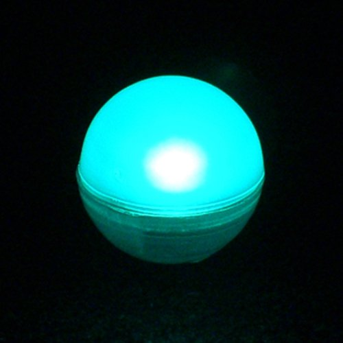 Fairy Berries, Tiny Round LED Lights, Water Resistant, 10 Pack, TEAL LSD B00GZPDKOM