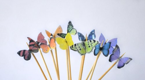 Edible Butterflies © - Mini Assorted Rainbow Set Of 48 - Cake And Cupcake Toppers, Decoration front-140199