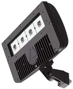 lithonia lighting dsxf2 led 4 50k m2 outdoor led 80w. Black Bedroom Furniture Sets. Home Design Ideas