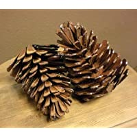 Handmade Decorative Metal Pine Cone Sculpture (One Cone)