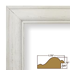 Amazon.com - Craig Frames 77332900 8.5 by 11-Inch Picture ...