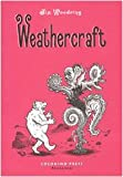 Weathercraft (8876181695) by Jim Woodring