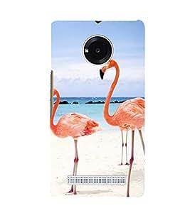 Printvisa Premium Back Cover Pair Of Flamingos In Love Design For Yu Yunique