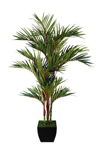 Laura Ashley Artificial Palm Tree In Container, 8-Feet, Lipstick Red front-999199
