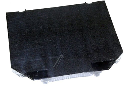 Roblin filtre charbon 5403008