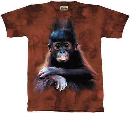 Orangutan T ShirtSelect Your Size