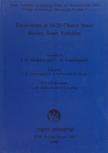 Excavations at 16-20 Church Street, Bawtry, South Yorkshire (British Archaeological Reports (BAR) International)