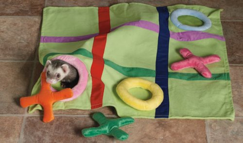 Marshall Ferret Fun-N-Games Blanket