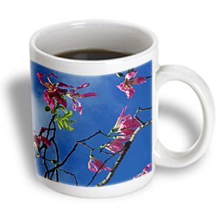 Susans Zoo Crew Photography Flowers - Pink Orchid Tree Branches Blue Sky - 11Oz Mug (Mug_184445_1)