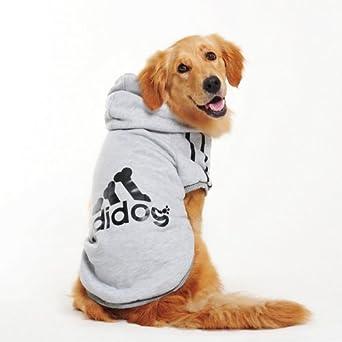 vetement chien adidog