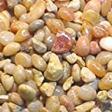 Petco River Rock Shallow Creek Aquarium Gravel, 5 lbs.