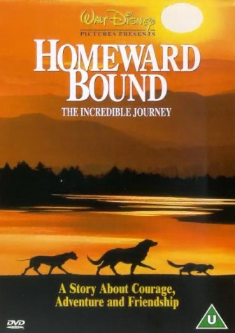 homeward bound The paperback of the homeward bound: the life of paul simon by peter ames carlin at barnes & noble free shipping on $25 or more.
