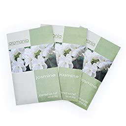 JR Pack of 3 Protable 20g Scented Sachets with Hanger suitable for Room, Wardrobe, Bathrooms, Cars, Laundry Baskets,etc (Jasmine - 3 Packs)