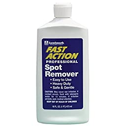 Fast Action Professional Spot Remover - 1 Each