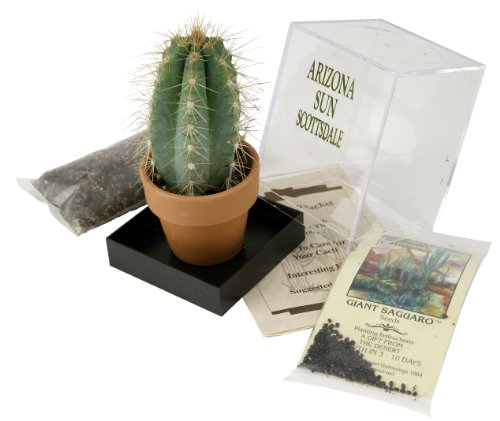 grow-your-own-saguaro-cactus-kit-incubator-cactus-seeds-southwest-arizona-southwestern-gift-idea-see