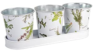 Esschert Design Herb Print Galvanized Steel Flower Pots with Saucer, Set of 3