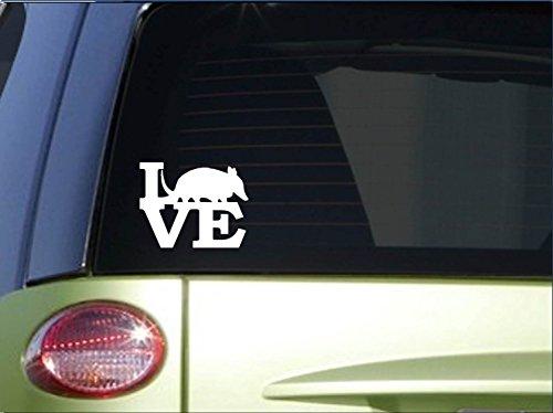 armadillo-love-sticker-h168-6-vinyl-texas-decal
