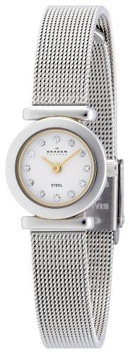 SKAGEN (スカーゲン) 腕時計 basic steel ladys 107XSGS ケース幅: 18mm レディース [正規輸入品]