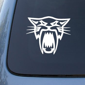 Arctic Cat - Artic - Car, Truck, Notebook, Vinyl Decal Sticker