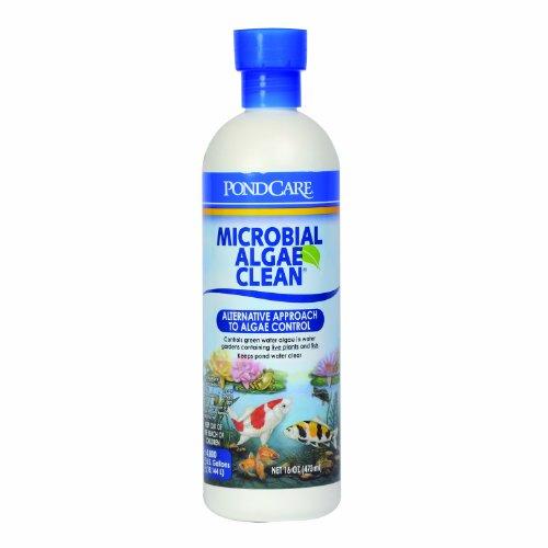 api-pondcare-microbial-algae-clean-16-ounce