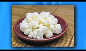 Kefir Grains - Living Probiotic Enriched