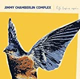 Life Begins Again by Jimmy Chamberlin Complex [Music CD]
