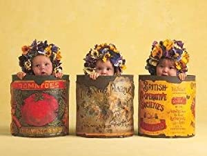 Anne Geddes Pansies Puzzle by Rose Art