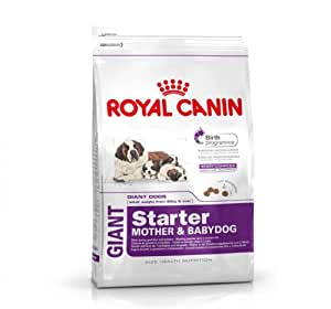 buy royal canin giant starter 1 kg online at low prices in india. Black Bedroom Furniture Sets. Home Design Ideas