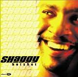 echange, troc Shaggy - Hot Spot