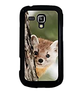Cute Animal 2D Hard Polycarbonate Designer Back Case Cover for Samsung Galaxy S Duos S7562
