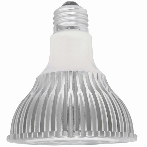 Dimmable 10W Warm White R30 Led Light Bulb