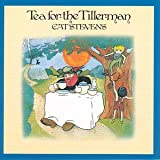 Tea For The Tillerman Stevens Cat